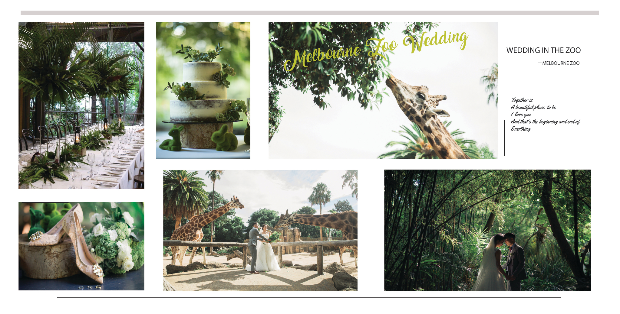 wedding planning Melbourne wedding theme idea wedding in the zoo